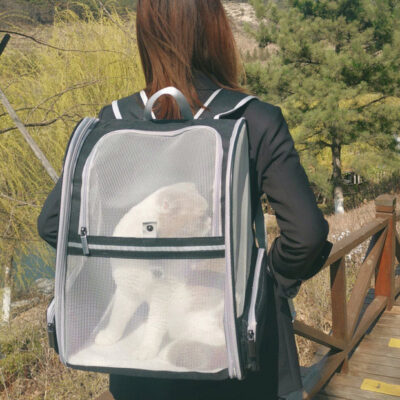 Breathable Pet Backpack (18